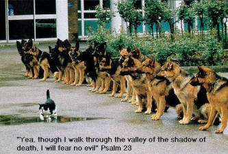 Psalm 23 picture